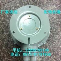 100W防爆灯/BXL-100防爆吸顶灯