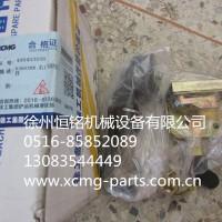 供应机械及行业设备专用配件400403098    DS502BR右门锁组件